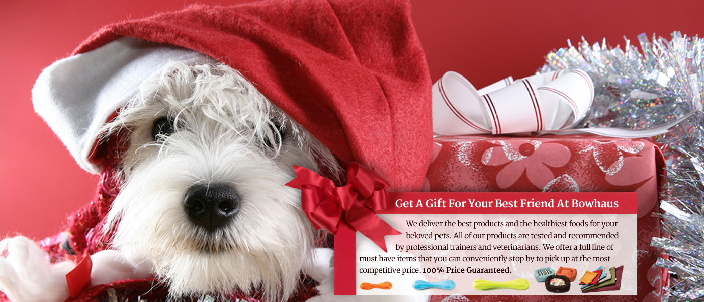 Christmas Presents for dogs - Pasadena